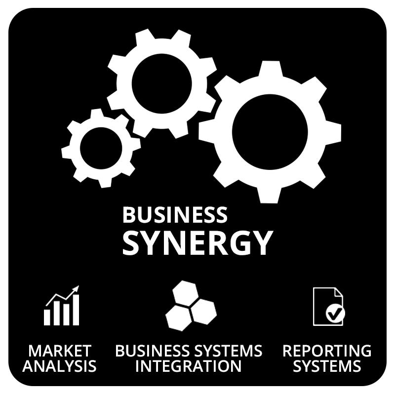 ZWAANZ   Business Synergy