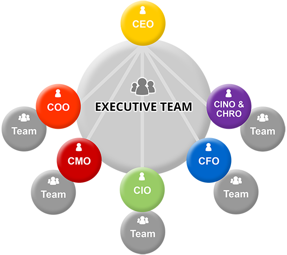 ZWAANZ | Basic Organisational Structure: Executive Team