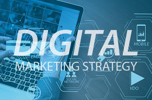 ZWAANZ   Digital + Website Assessment