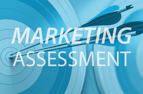 ZWAANZ   Marketing Assessment