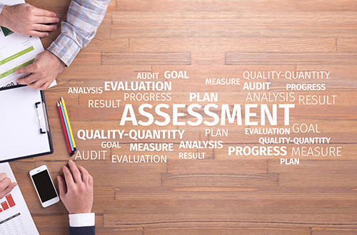 ZWAANZ   Business Assessment