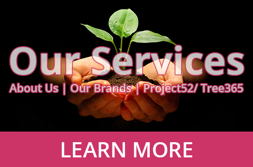 ZWAANZ | Our Services: Click for More