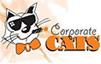 ZWAANZ | Client: Corporate Cats