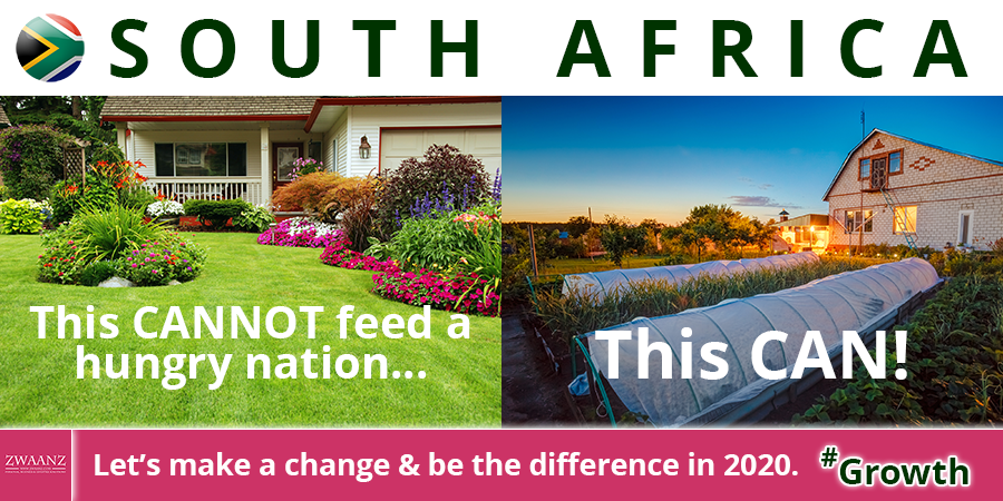 ZWAANZ   Better Living: South Africa - Feed a Hungry Nation
